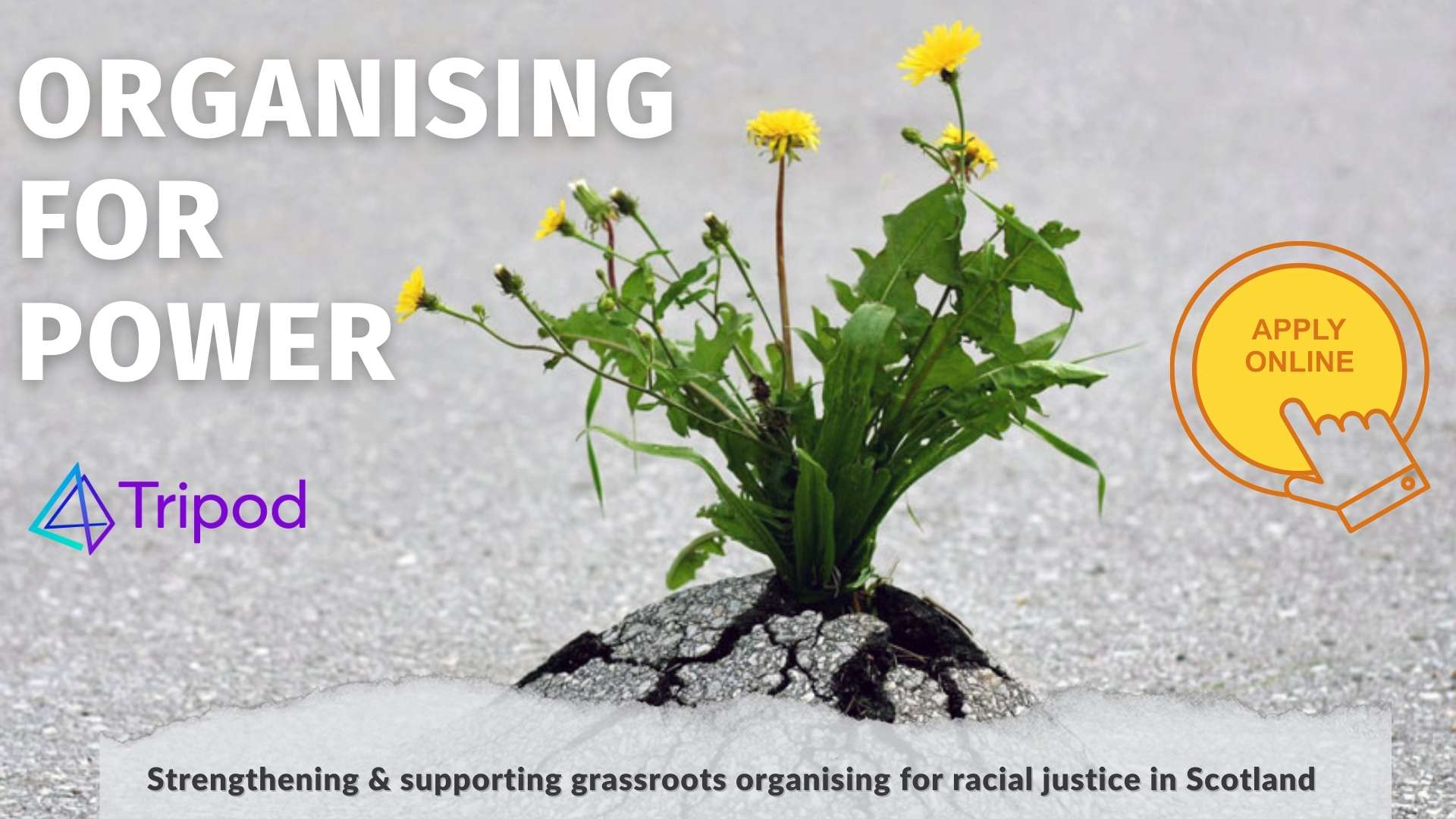 Poster for Organising for Power: click here to apply online
